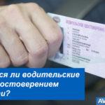Являются ли водительские права удостоверением личности?