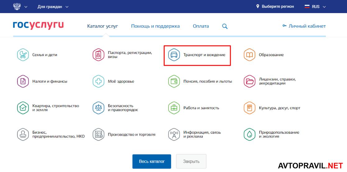 каталог услуг на портале гос услуг