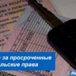 Штраф за просроченные водительские права в 2019 году