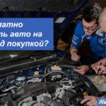 Как бесплатно проверить авто на ДТП перед покупкой