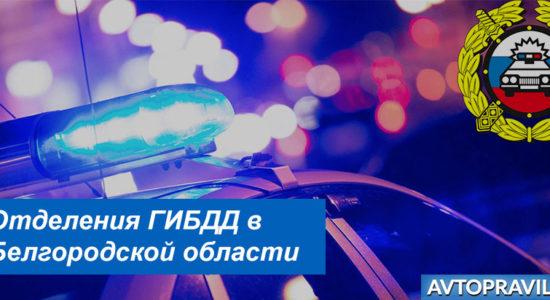 Адреса и режим работы подразделений ГИБДД в Белгородской области