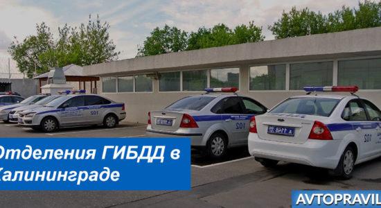 Адреса и режим работы подразделений ГИБДД в Калининграде
